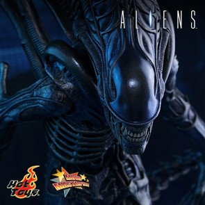 Alien Warrior - Aliens - Hot Toys