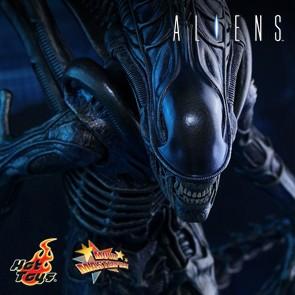 Alien Warrior - Aliens - Hot Toys
