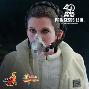 Princess Leia in Star Wars: Episode V - Hot Toys