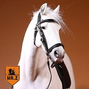 German Hanoverian Warmblood Horse - Mr. Z