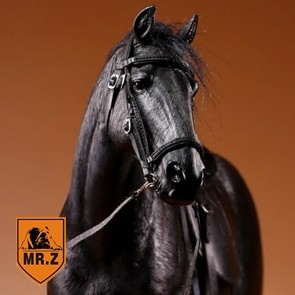 German Hanoverian Warmblood Horse - schwarz - Mr. Z