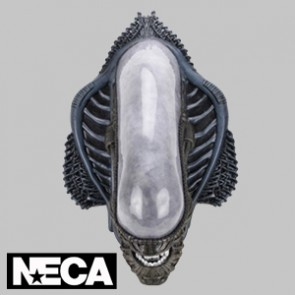 Alien - Foam Replica - Xenomorph Wall-Mounted Bust - NECA